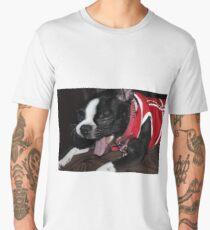 Kitana - Boston Terrier Men's Premium T-Shirt