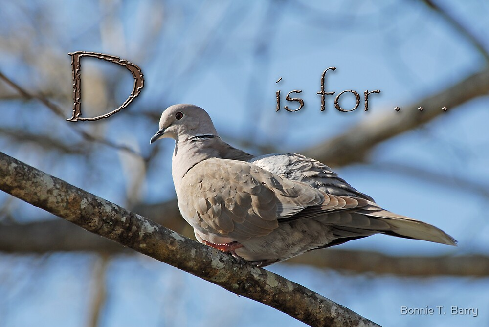 D is for . . .  by Bonnie T.  Barry