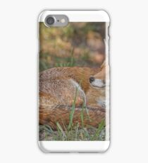 Vixen at entrance to earth. iPhone Case/Skin
