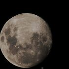 Moon Friday by Peter Krause