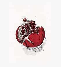 pomegranate drawing Photographic Print
