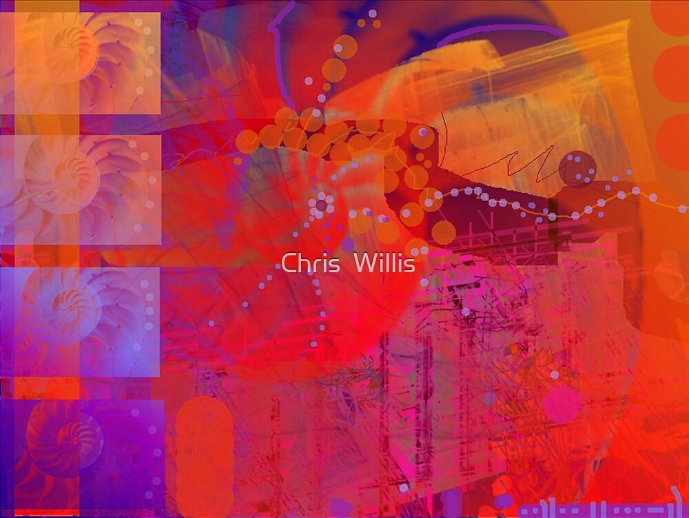 Nautilus by Chris  Willis