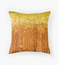 Ripe, Golden wheat stalks in a field before harvest  Throw Pillow