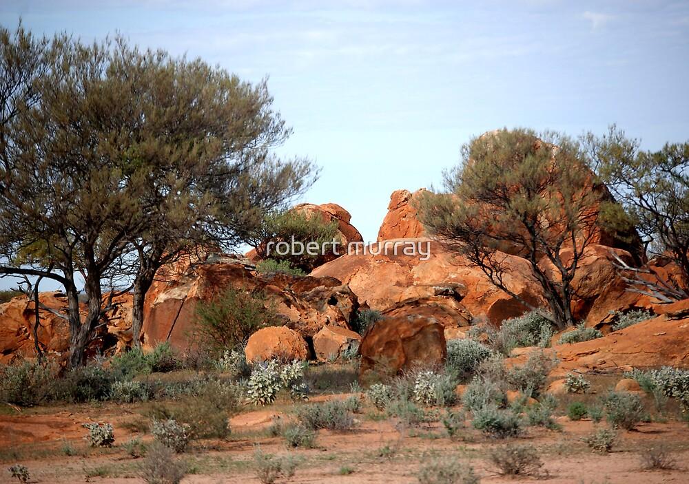 Trees amongst the rocks by robert murray