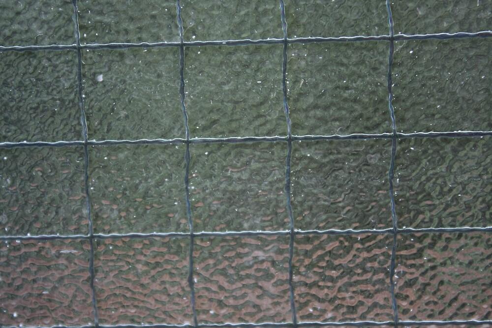 Glass Prison by Geoffrey Wicking