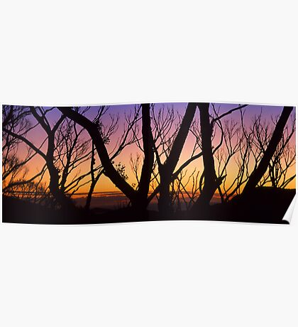 Windy Saddle Sunset Poster