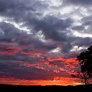 Stormy Sunset by Joel McDonald