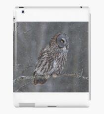Perching Owl... iPad Case/Skin