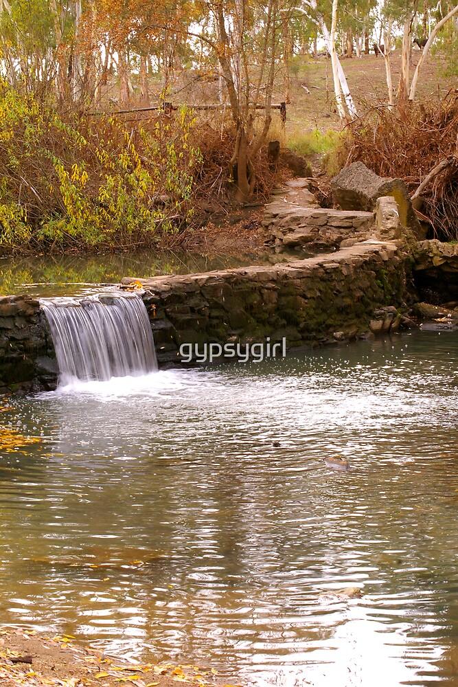 Water by gypsygirl