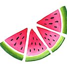 Melons by skrich