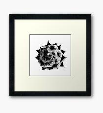 Organic Artichoke Framed Print