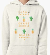 How To Be A Human Being Glass Animals Pullover Hoodie