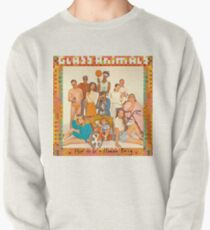 Glass Animals - album cover Pullover Sweatshirt