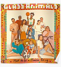 Glass Animals - album cover Poster