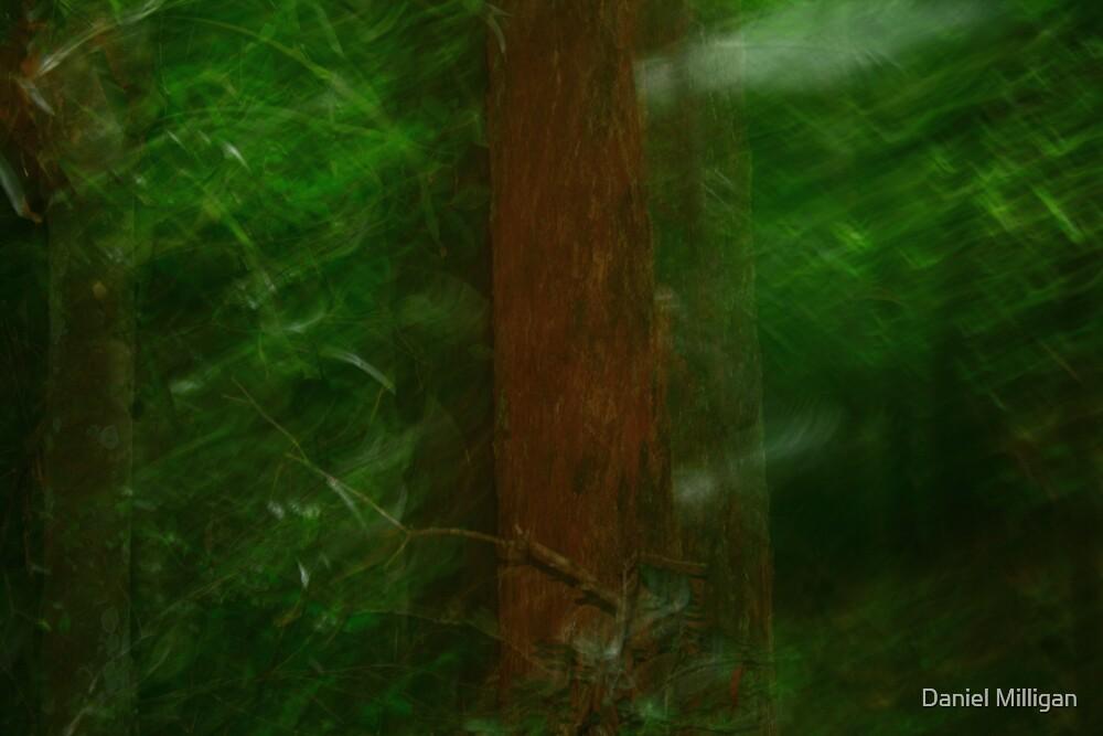 Blurred by Daniel Milligan