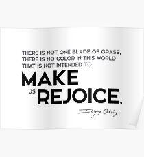 make us rejoice - john calvin Poster