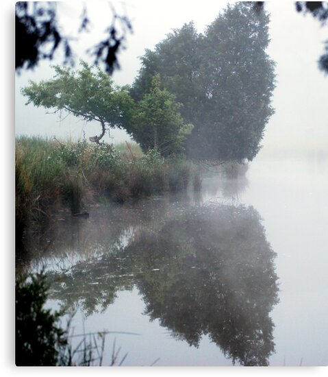 Foggy Morning Reflections by madman4