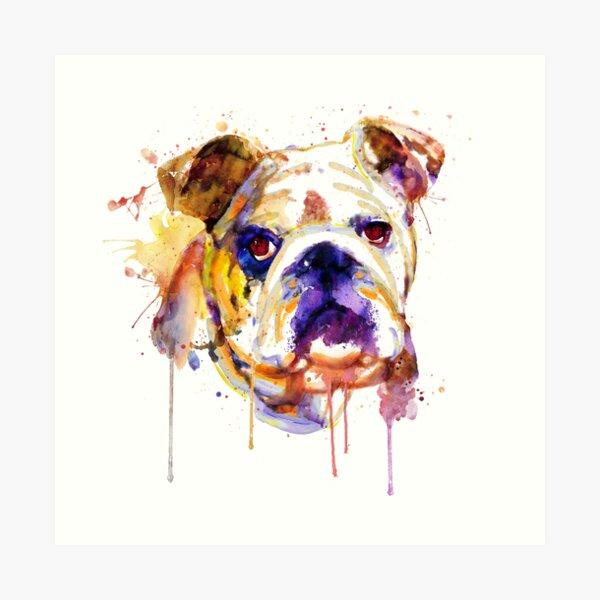 English Bulldog Head Art Print