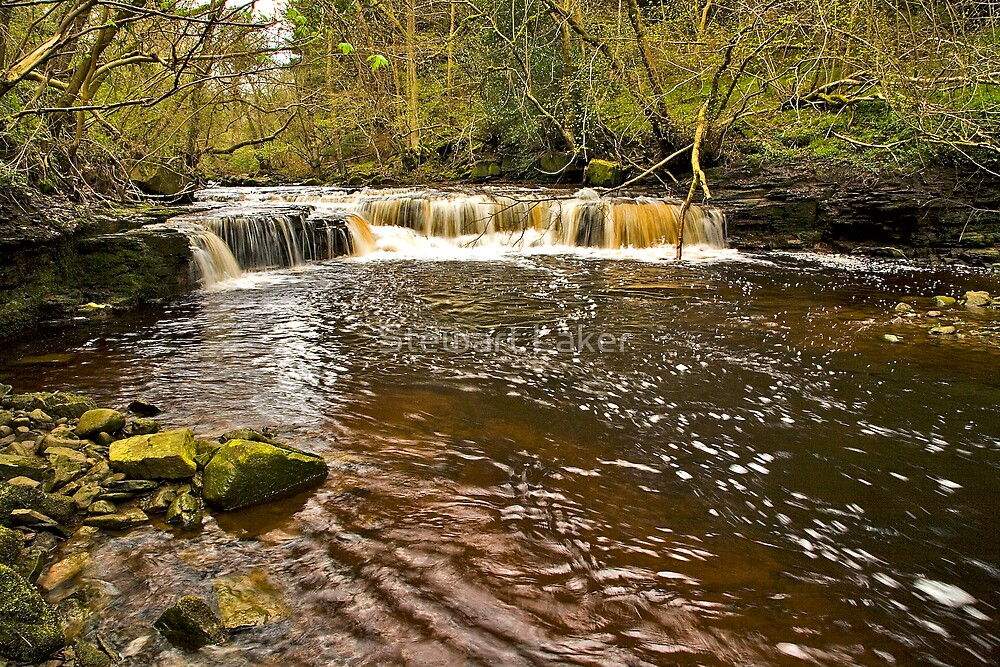 West Beck Water Fall by Stewart Laker