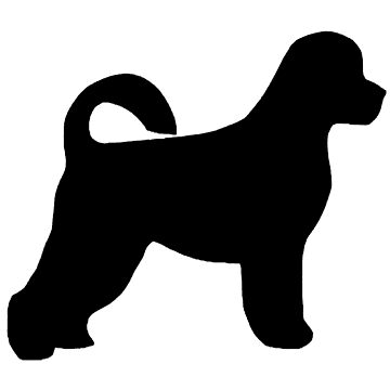 portuguese water dog silhouette by marasdaughter
