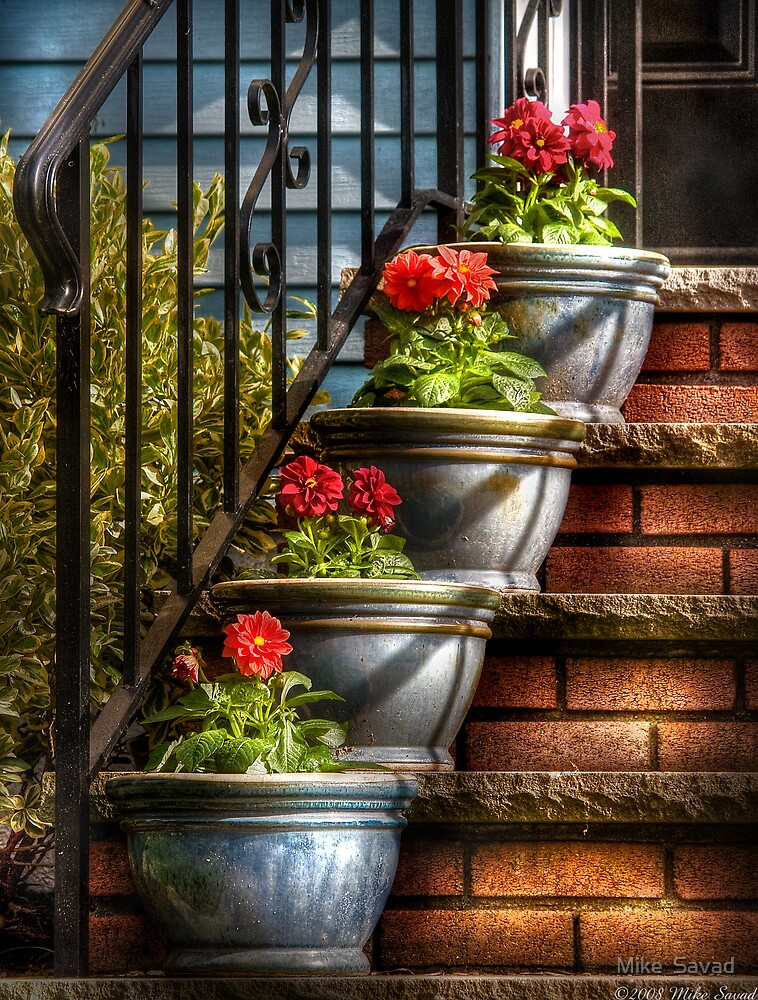Four Pots by Michael Savad