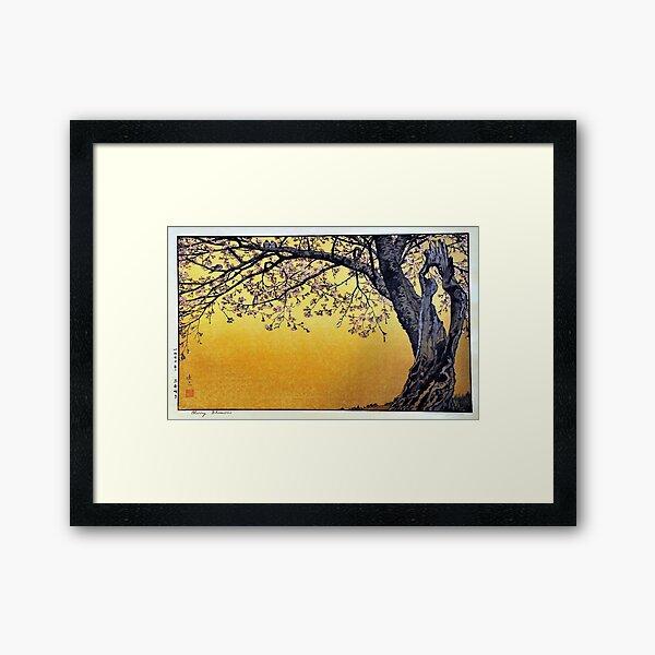 Yoshida Toshi Cherry Blossoms Framed Art Print