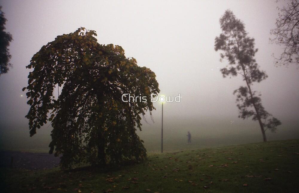 Fog walker by Chris Dowd