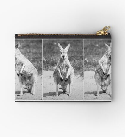 The Guardian Studio Pouch