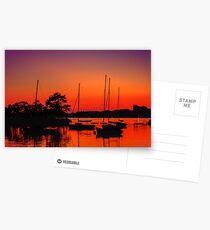 Sailors' delight Postcards