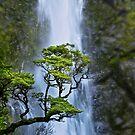Bridal Veil Falls .2 by Alex Preiss
