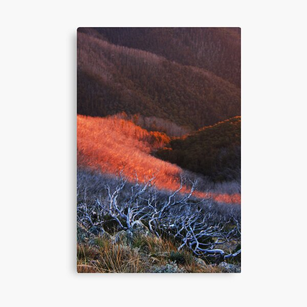 Sun fire in the valley Canvas Print