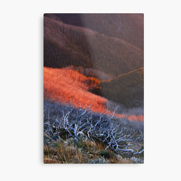 Sun fire in the valley Metal Print