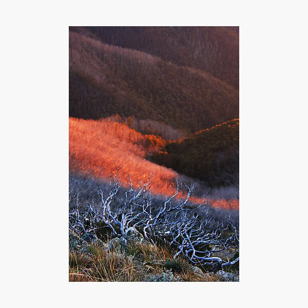 Sun fire in the valley Photographic Print