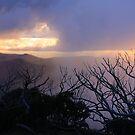 Misty sunset by Robyn Lakeman