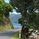 The narrow, twisting road down to the sea......!! by Roy  Massicks
