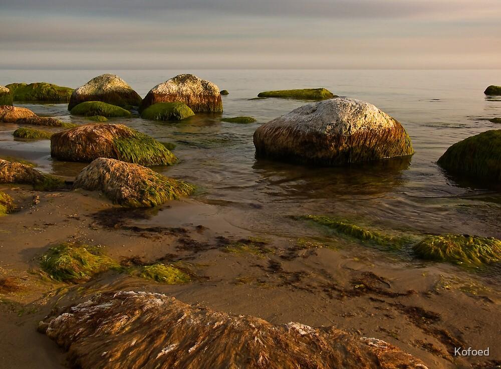Quiet Stones by Kofoed