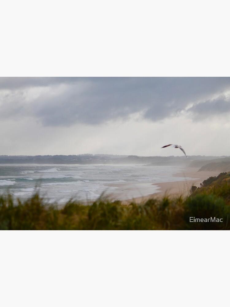 Wild Bass Strait by EimearMac
