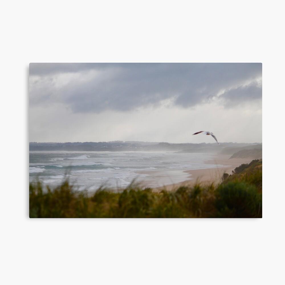 Wild Bass Strait Canvas Print