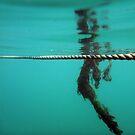 Underwater by rom01