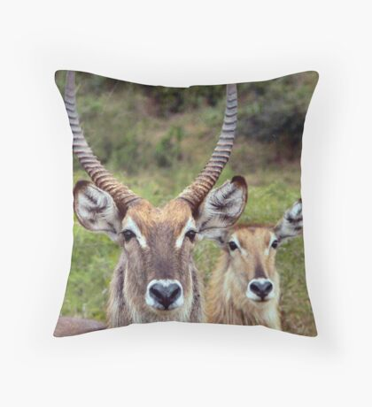 """""""In his shadow..."""" Throw Pillow"""