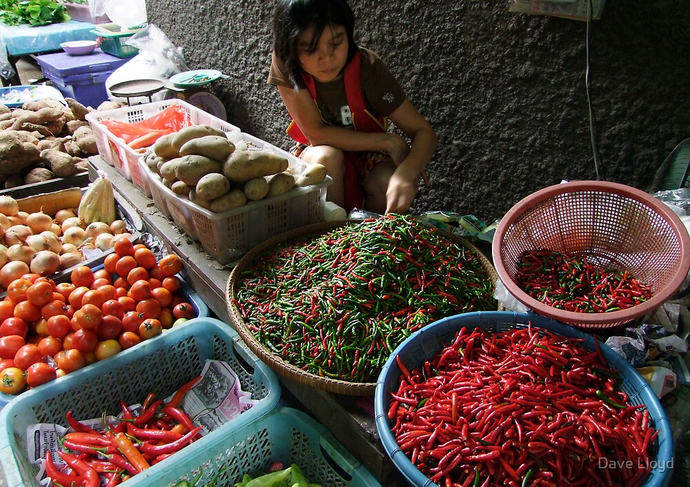 Market - Spice by Dave Lloyd