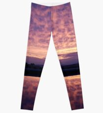 Purple Haze Leggings