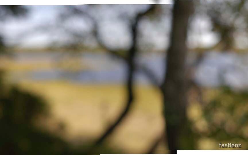 Defocused Landscape by fastlenz