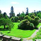 Armadale Castle Gardens by Tom Gomez