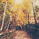Stone Path Through a Forest in Autumn by Beverly Claire Kaiya