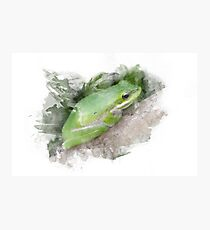 Frog Watercolor Photographic Print