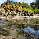 Coastal scenery Apollo Bay by Peter Rattigan