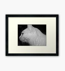 my ghost casper Framed Print