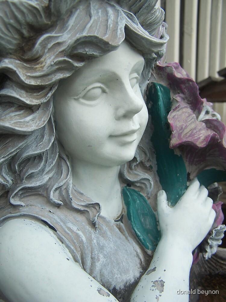fairy by donald beynon