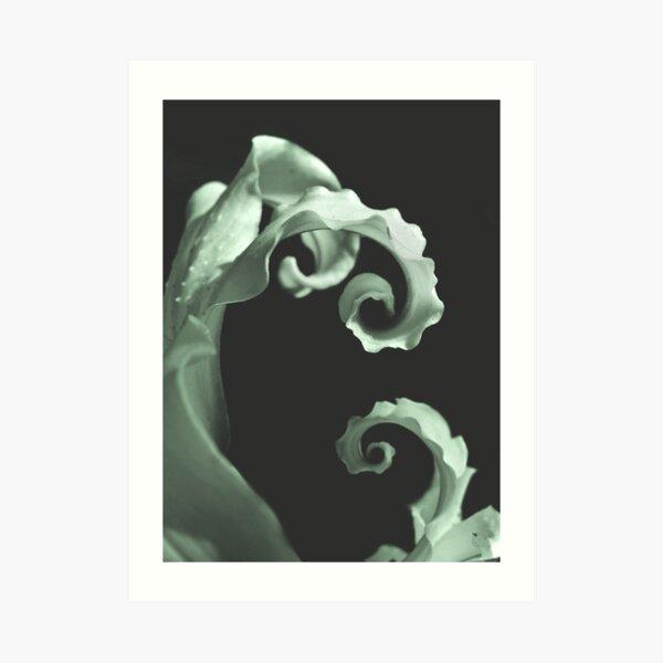 Final Twirl  Art Print
